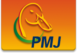 PMJ Fabricage
